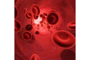Read more about the article L'examen sanguin